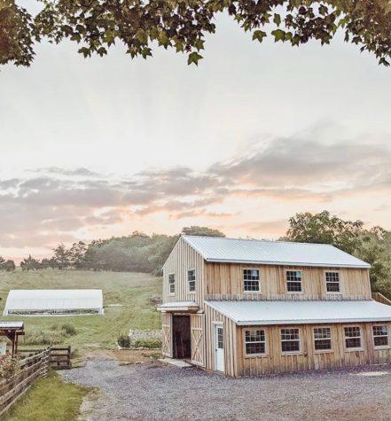 Season Yield Farm