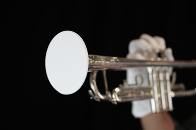 RCHS Marching Band Begins for Season