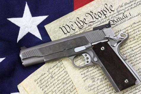 Why Gun Control Laws are Necessary